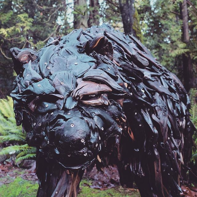 """Vanish"", a grizzly bear, roams the forest after being on display in the gallery this summer as part of #theartofconservation. I donated partial proceeds from the sale of this and other sculptures to help #safeguardcoastalcarnivores. Please consider donating to @raincoastconservation"