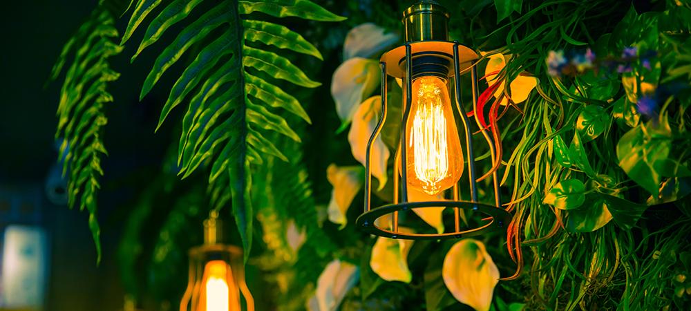 eco-friendly restaurant design