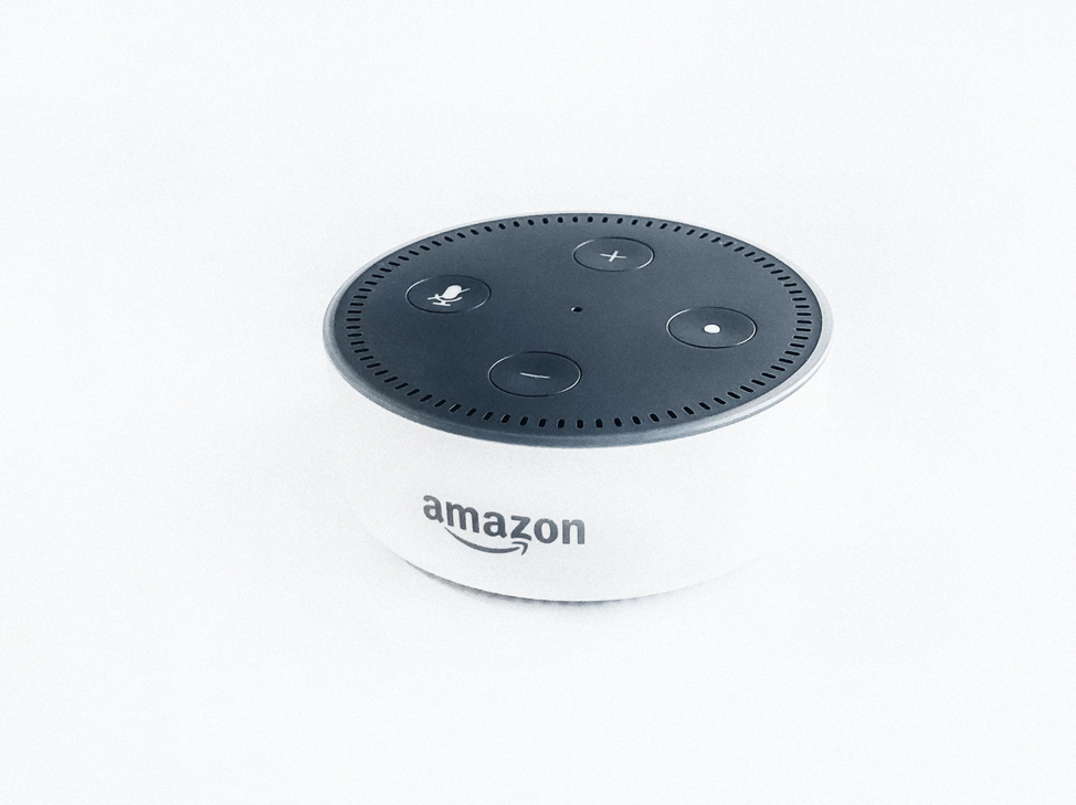 Voice assistants will dominate the restaurant delivery industry