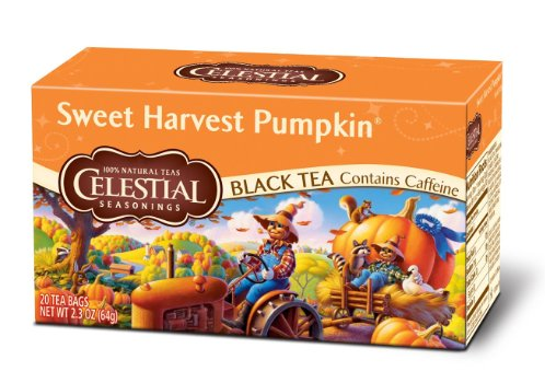 54f9617775cb5_-_pumpkin-spice-tea-1.png