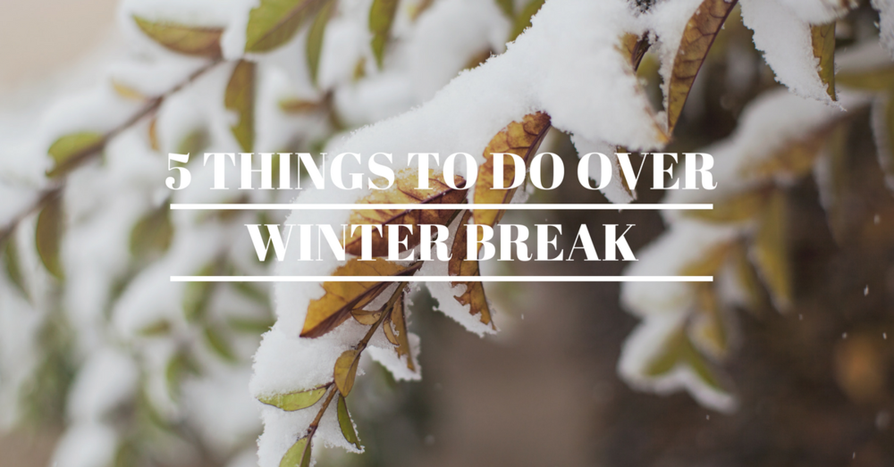5 things to do over winter break.png