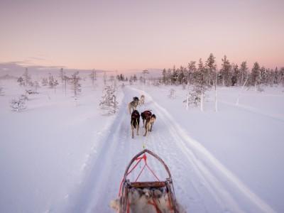 Finland_Husky_Ranch_Lapland-400x300.jpg