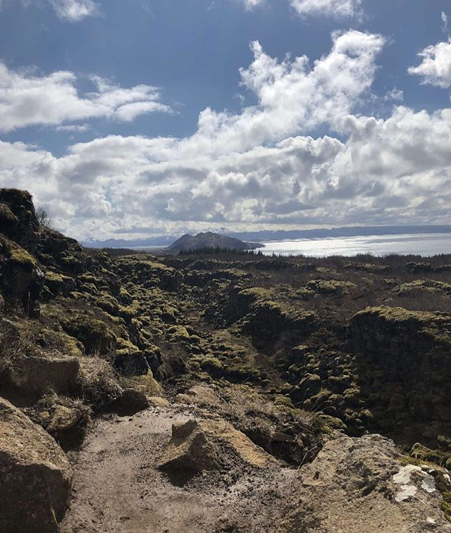Our new Managing Director @soy__soy is starting off his summer by checking out Iceland! . . .  #clagency #travel #iceland