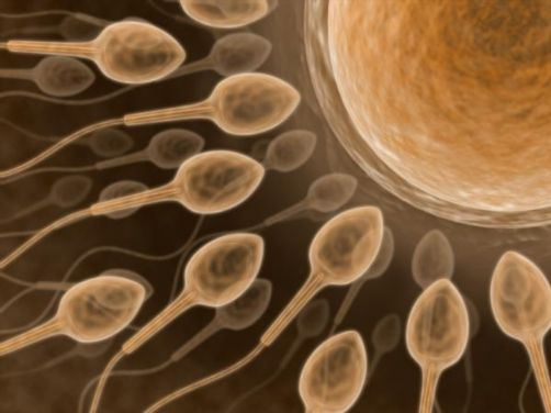 male-infertility1