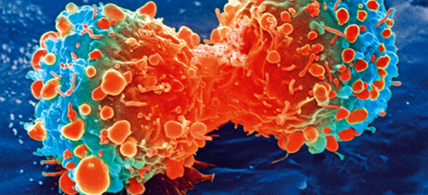 Cancer cells mutated