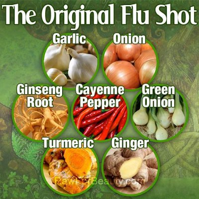 original flu shot.jpg
