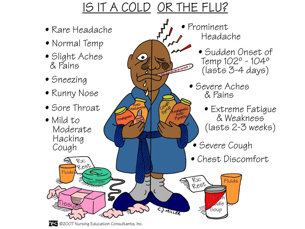 cold or flu.jpg
