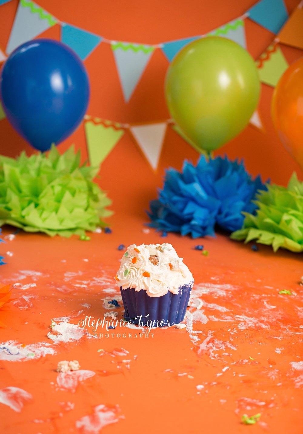 Stephanie Tignor Photography   Fredericksburg VA Cake Smash Photographer   Warrenton VA Cake Smash Photographer   Stafford VA Cake Smash Photographer   Cake Smash Photographer