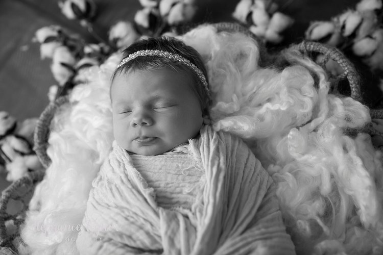 Stephanie tignor photography mavis newborn 0365 jpgstephanie tignor photography fredericksburg va newborn photographer warrenton va