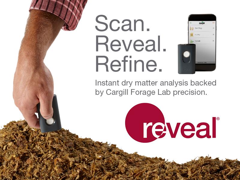 REV1708-800x600-Static.jpg