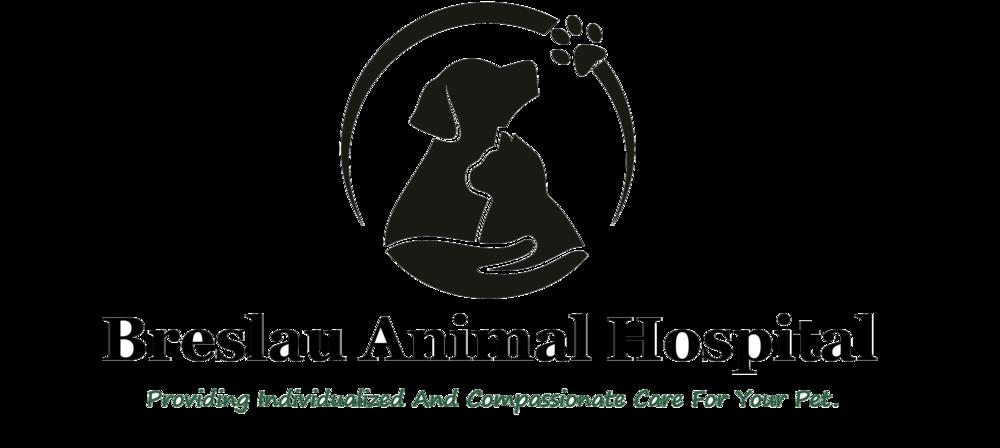 Veterinary clinics of the Nikolaev region: a selection of sites