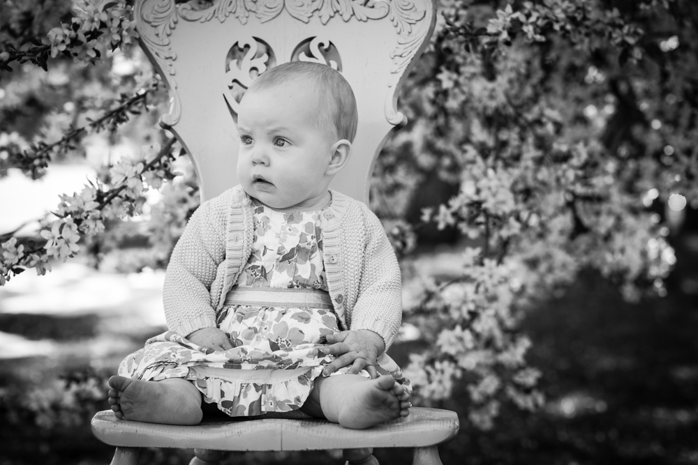Denver and Evergreen Colorado family and child photographer.  Natural light, boutique style photography for children battling cancer and other serious illness.
