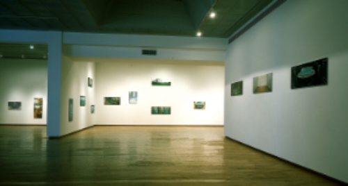 Installation, Edward Thorp Gallery, 1996