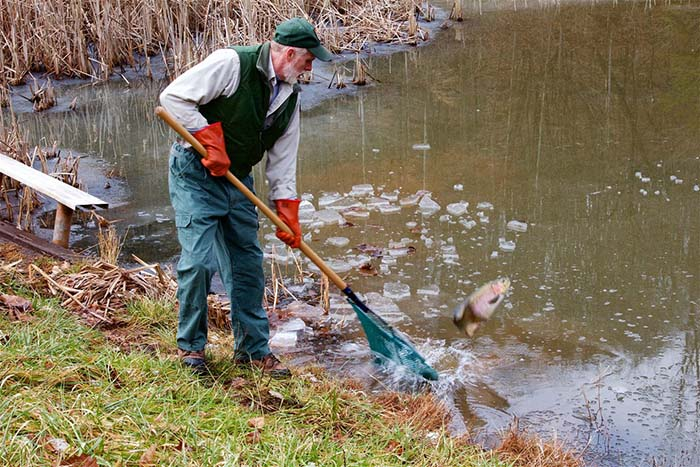 West Virginia Trout stocking.jpg