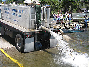 Southland Christian Church Lake Latest KY Trout Stocking.jpg
