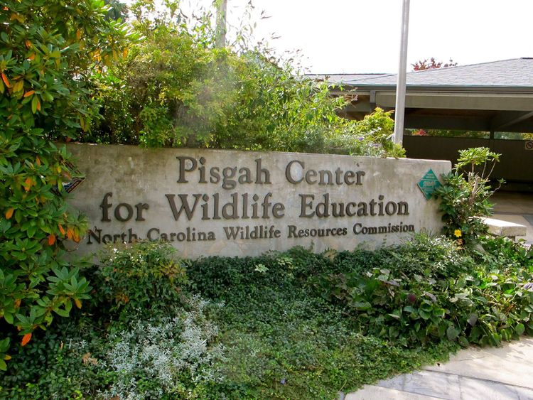 Pisgah Wildlife Education Center.jpg