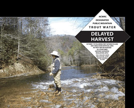 NC's-Delayed-Harvest-Trout-Water-Regulations-Begin-Oct.jpg