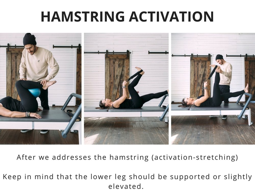 + hamstring activation with plus movimiento