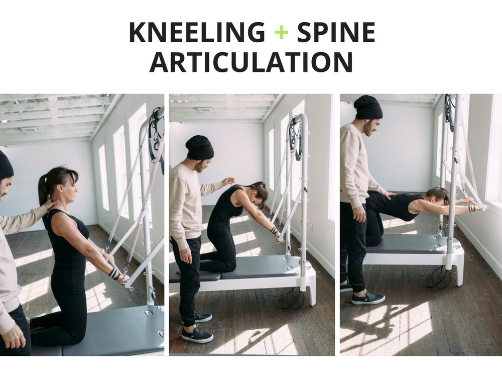+ spine articulation with plus movimiento
