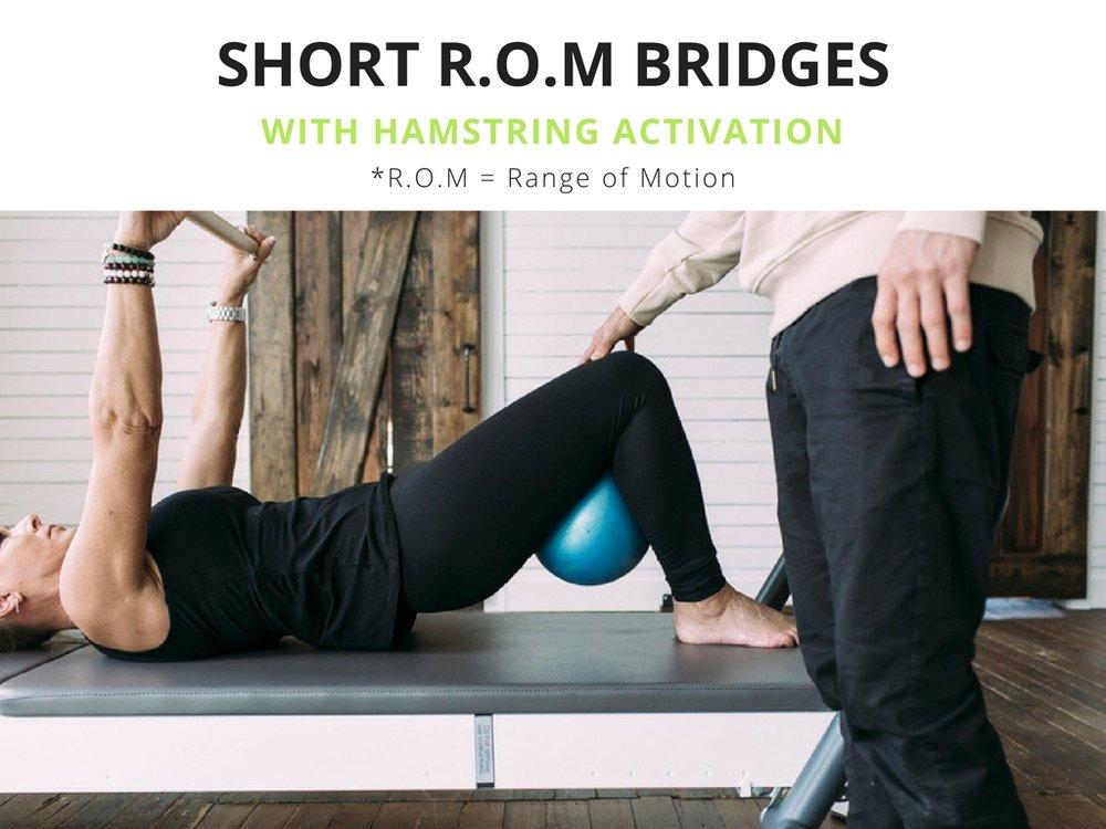 + short r.o.m bridges with +plusmovimiento