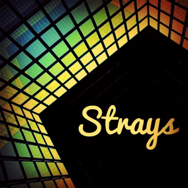 Strays: Audiobook Album - Featuring Neil Adams MBE