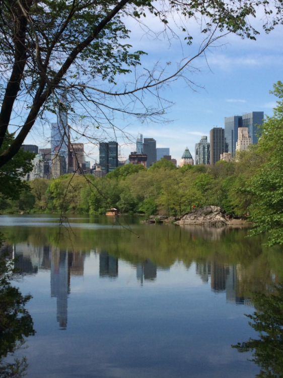 We certainly kept up with our indulgent eating habits by clocking an average of 20km on the pedometer each day! Here is a spectacular view of the city during a morning stroll through Central Park.
