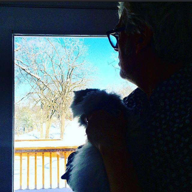 @tinythepersian and self gazing out over the Arctic Sahara of East Nashville. We're contemplating harmonica solos that will describe everything. #ittakesalottolaughittakesacattowiaaaowwww
