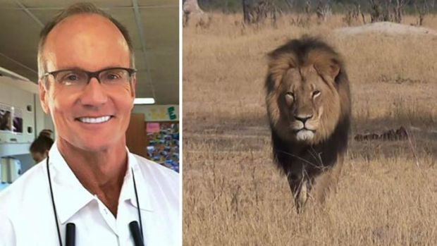 Walter Palmer, the dentist who killed Cecil the Lion