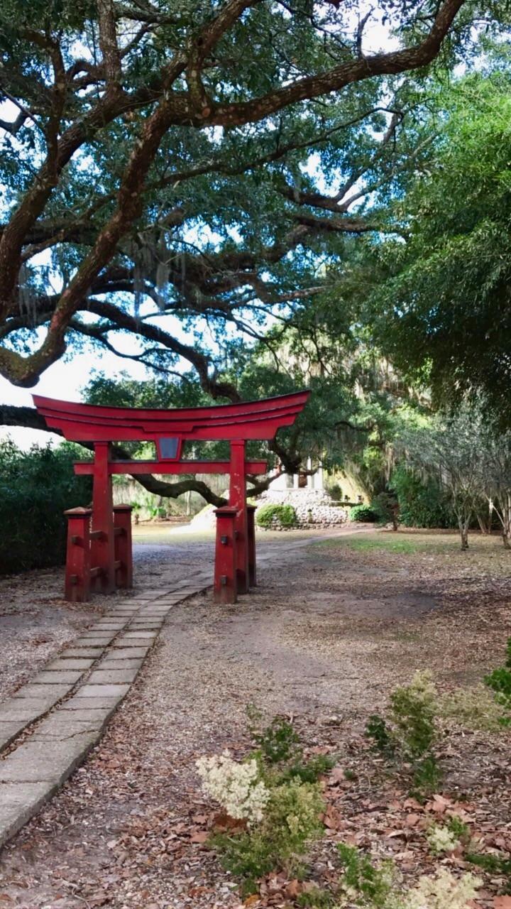avery island japanese garden .jpeg