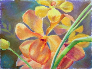 yellow-orchid-oil-pastel.jpg