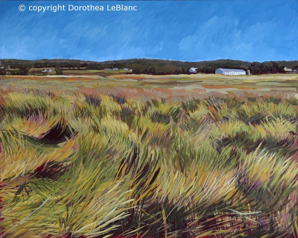 Ocean Swept Grass of Scott's Bay, Nova Scotia