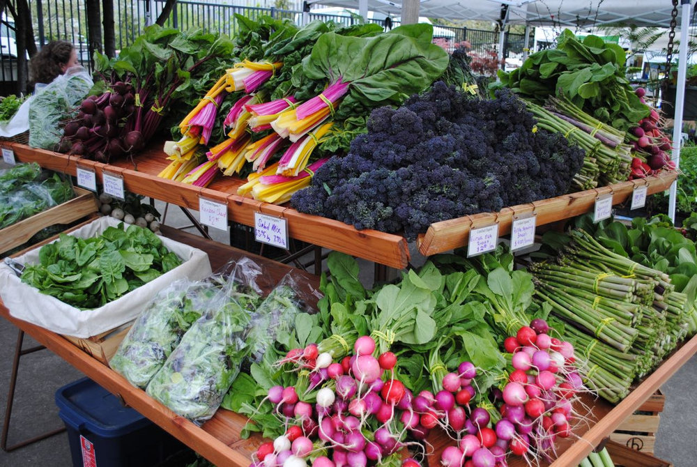 Lane County Saturday Farmers Market - More info here!