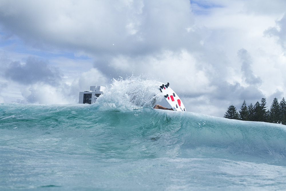 IMG_4629 snapper-8-3-2016-mikey-wright.jpg