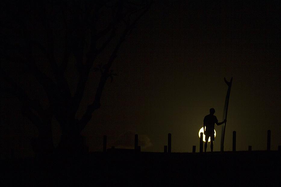 The Nightwalkers by Fran Miller 0.jpg