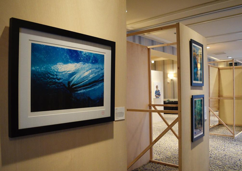Fran Miller Matters of the ocean.jpg