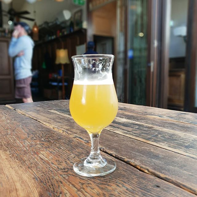 Q&A Pale ale. Have a taste @thelocaltaphousesk. The first iteration of this series has galangal, ginger and chilli blending beautifully with Azacca and Amarillo hops. Get in quick there isn't much left! #mollyrosebeer #q&a #paleale #collingwood #melbourne #stkilda #indiebeer