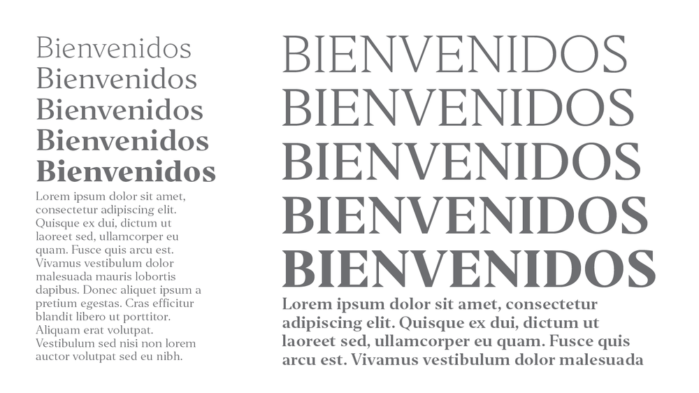 Indian Type Foundry : Editor  Newspaper headlines dwell in the realm immediacy, and the right typeface will capture attention in an instant. Editor and Editor Condensed are two such families. They each feature prominent wedge-shaped serifs and visible stroke contrast. Several letterform details retain a calligraphic feeling, too. The tops of uppercase letters, numerals, and ascenders all align with one another, and all of the fonts feature large diacritics. | Via ITF |