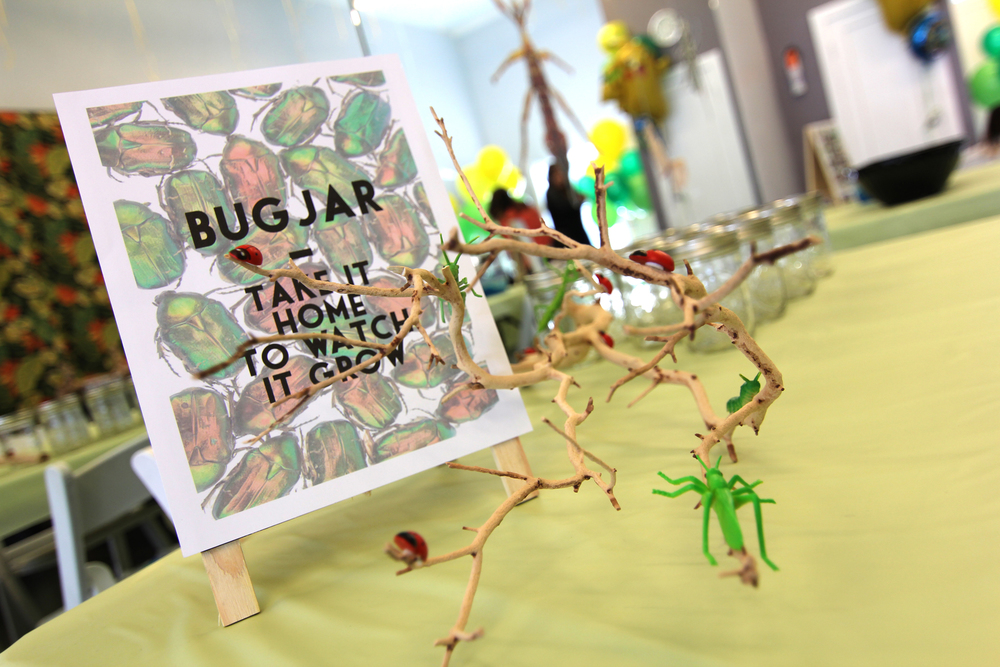 tarynco-events-bug-themed-kids-birthday-party-bug-game.jpg