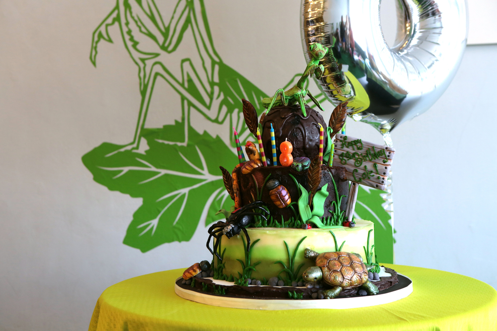 tarynco-events-bug-themed-kids-birthday-party-cake.jpg