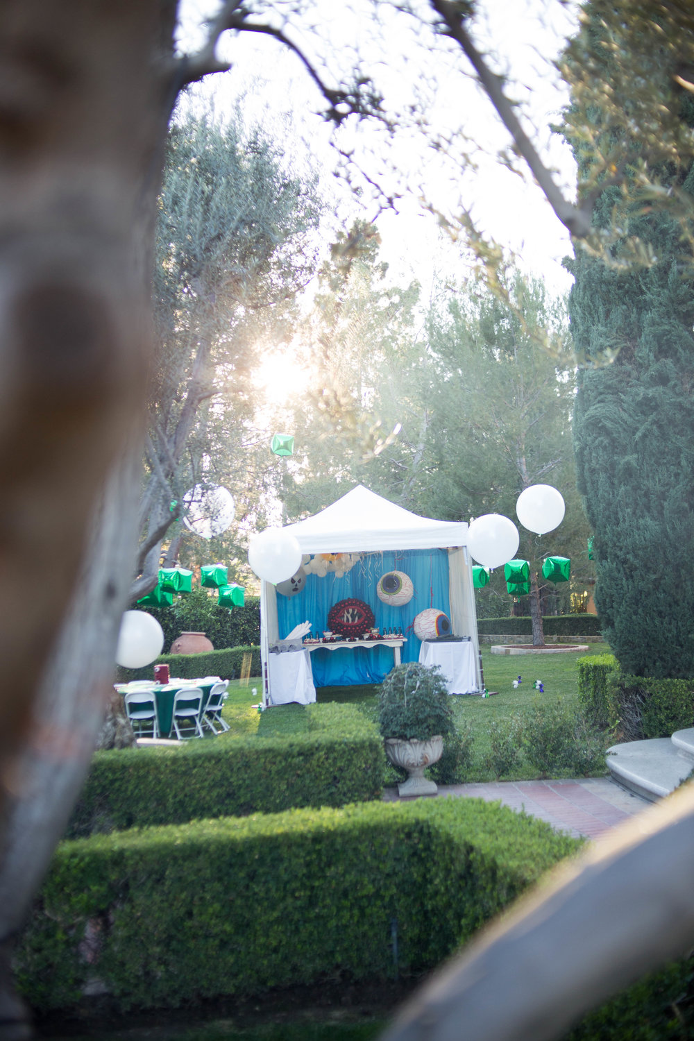 tarynco-gaming.kids.party.beverly.hills.terraria.tent.jpg