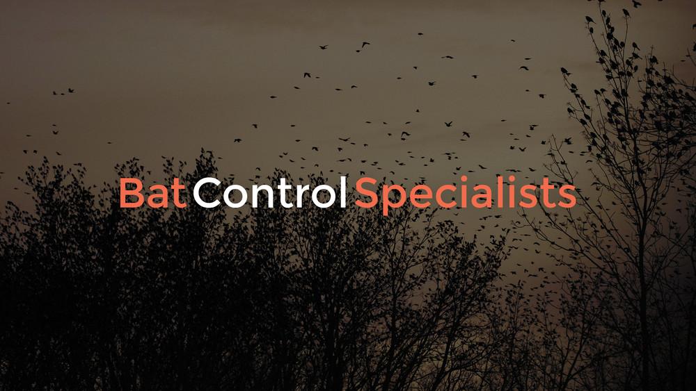 Bat Control Specialist Branding