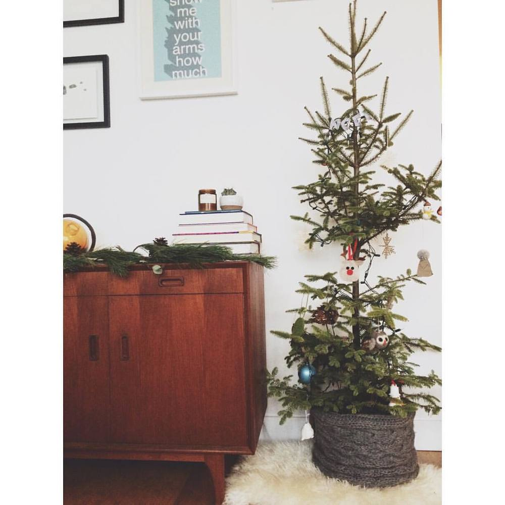 Got our skinny little tree! But it's the tallest we've ever had in our home 🌲.