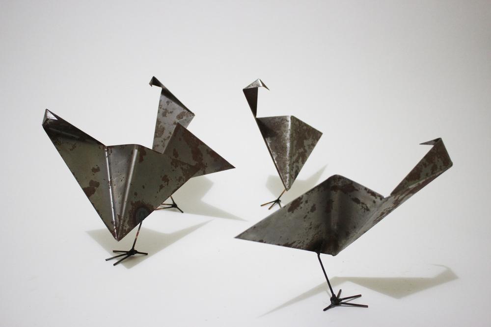 Bird Scattered.jpg