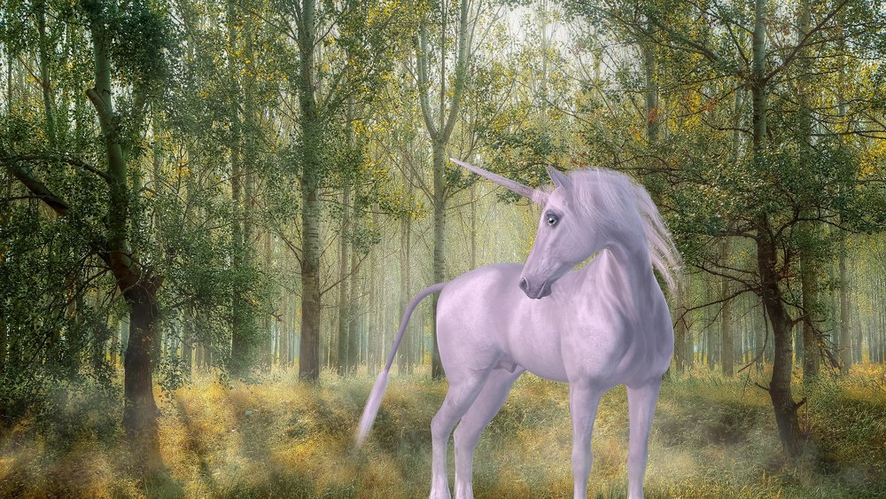 unicorn-1981219_1920.jpg