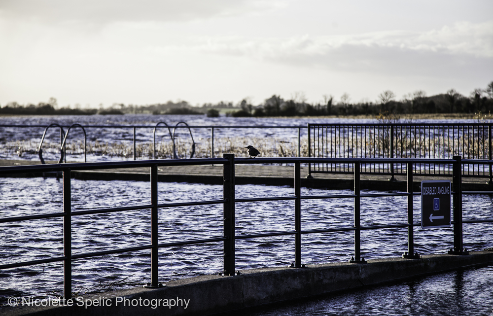 december_floodings-561.jpg