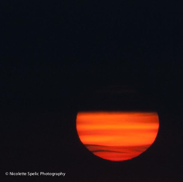 sun-1-of-1.jpg