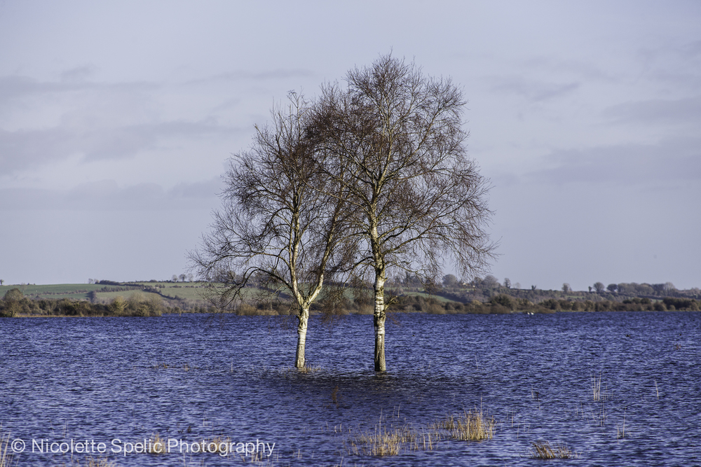 December_Floodings-456.jpg