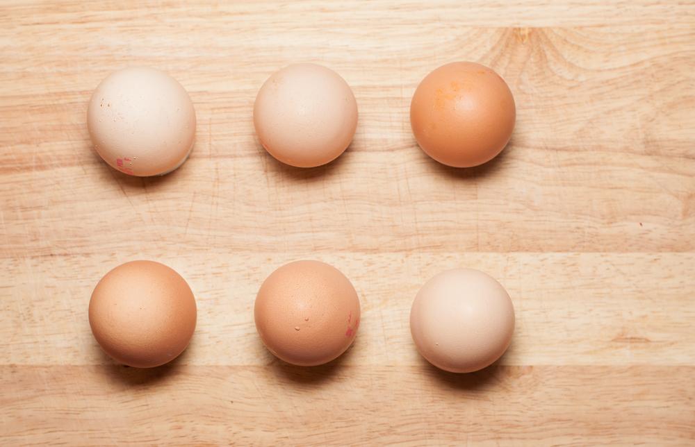 6 eggs - Free Range from happy hens :)