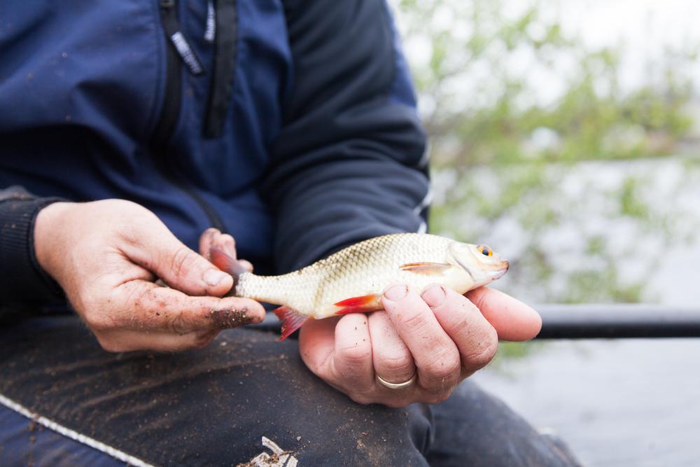 Fishing_Champion_Cathal_Hughes_visit_May2nd2016-5.jpg