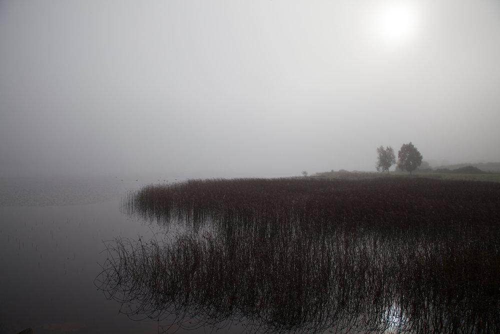 Ireland_Landscape_Candid_Photography5.jpg